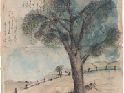 Baum 2